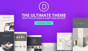 Is The WordPress Theme You Choose Really Important